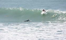 Surfing with 7th Wave Surf School